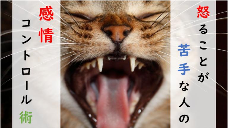 怒ることが苦手な人の感情コントロール術